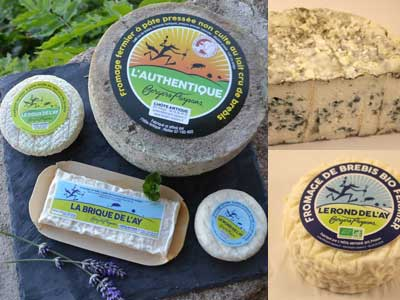fromage de brebis bio