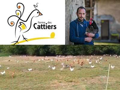 la ferme des cattiers poulet bio